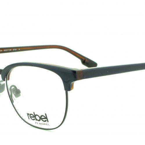 women-eyeglasses-mixed-pantos