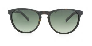 MOREL-Sunglasses-8262O brown-men-sunglasses-plastic-pantos