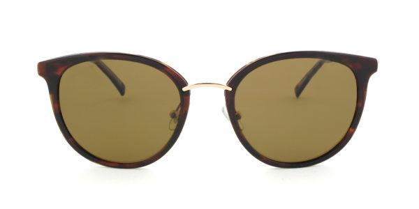 MOREL-Sunglasses-60011 brown-women-sunglasses-plastic-rectangle