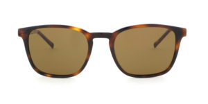 MOREL-Sunglasses-60026 brown-men-sunglasses