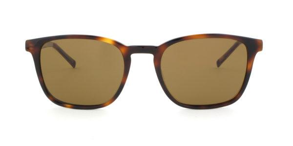 MOREL-Sunglasses-60026 brown-men-sunglasses