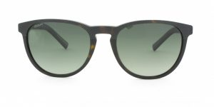 MOREL-Sunglasses--Men Sunglasses-Acetate-pantos