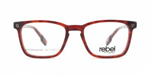 MOREL-Eyeglasses--Men Eyeglasses